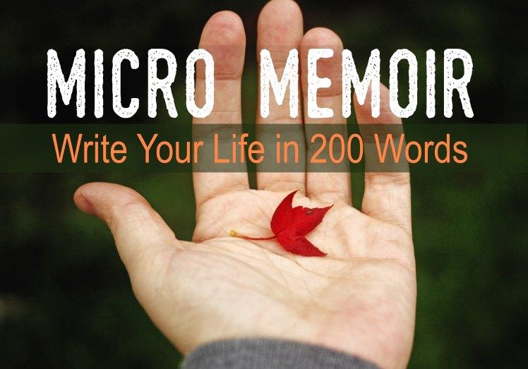 MicroMemoir